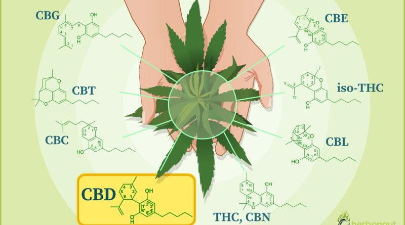 Na co pomaga olejek CBD?